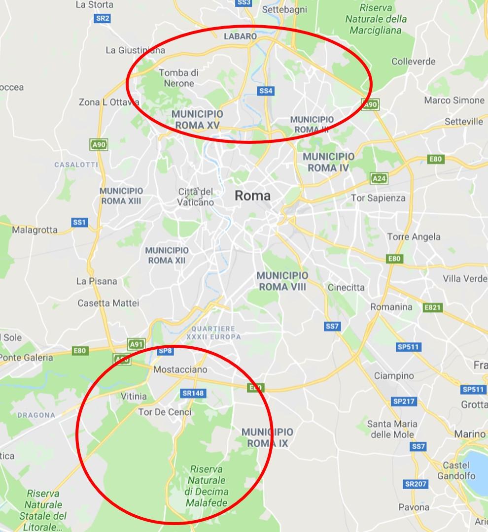 Cartina Roma Ciampino.Cinghiali A Roma C E Chi Spara Nella Paralisi Delle Istituzioni
