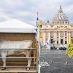 Uno scenario insolito, una ricorrenza molto sentita in tutta Italia