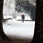 Il parco di Villa Imbonati a San Fermo della Battaglia, in provincia di Como, è coperto di bianco
