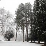 Il parco di villa Imbonati a San Fermo della Battaglia nella provincia di Como, è innevato