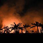 Uno scatto di parte degli incendi che sono divampati in Amazzonia durante lo scorso agosto, provocando la perdita di 1698 chilometri quadrati