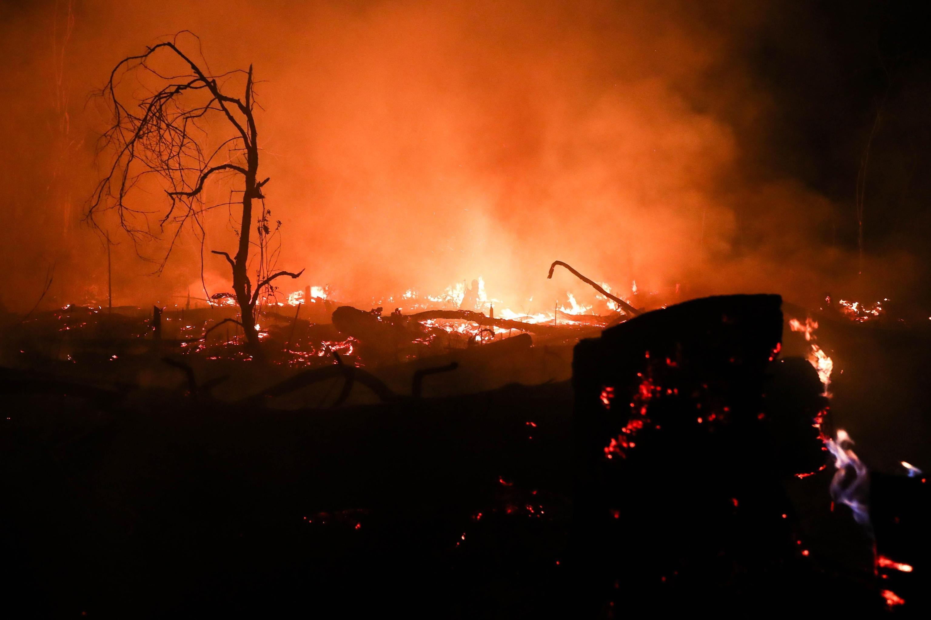 Un'immagine degli incendi in Amazzonia, che ha perso 1.698 chilometri quadrati della sua copertura vegetale lo scorso agosto