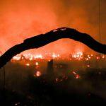 Un dettaglio degli incendi che hanno distrutto 1.698 chilometri quadrati dell'Amazzonia