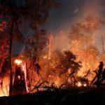 L' Amazzonia, a causa degli incendi dello scorso agosto ha perso un'area del 222% superiore a quella disboscata nello stesso mese del 2018 (526 quadrati chilometri), secondo i dati diffusi dal National Space Research Institute (INPE) del Brasile